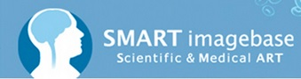 Discover the Scientific & Medical Art (SMART) imagebase today!