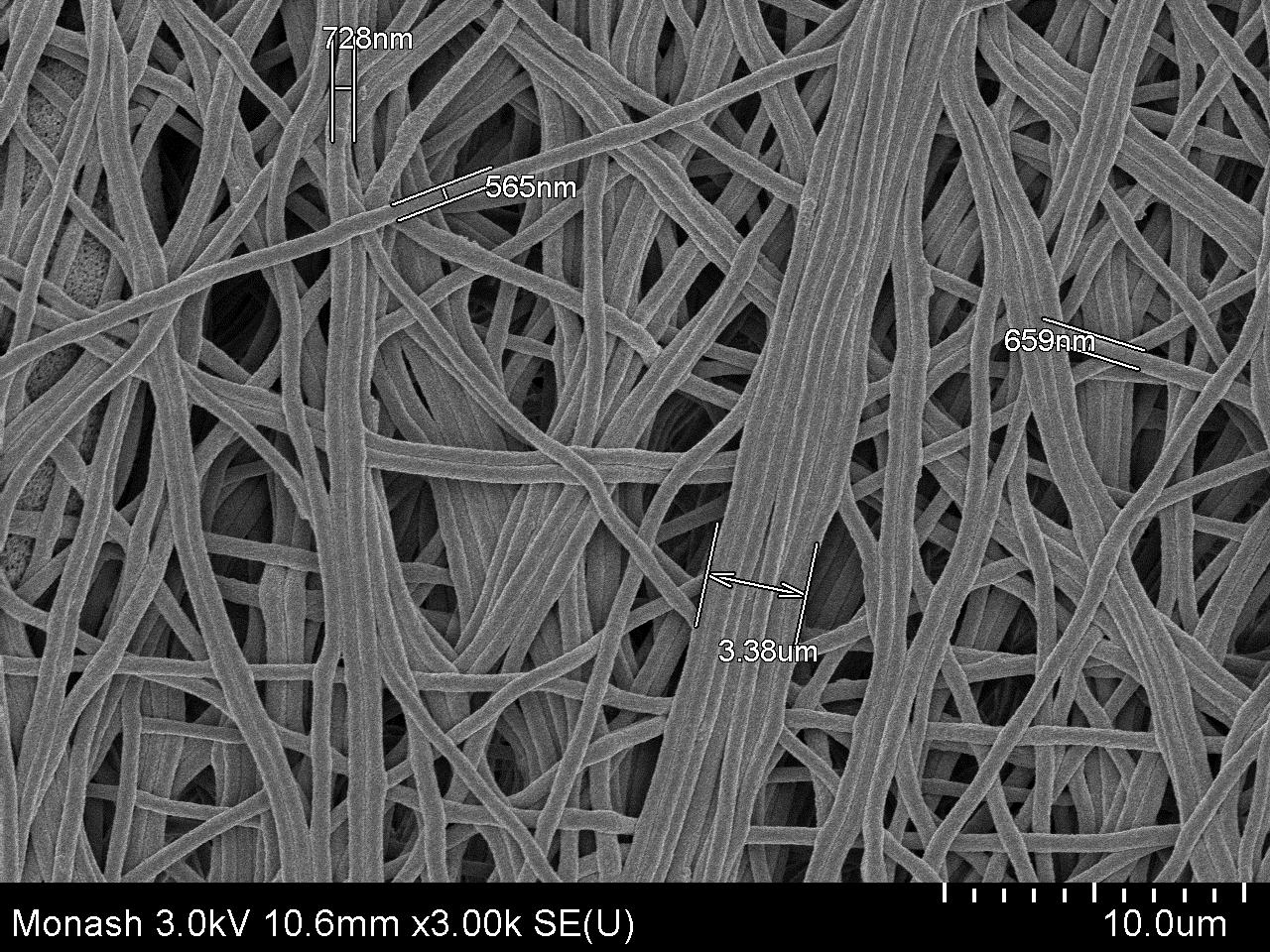 SEM micrograph of a PAN membrane